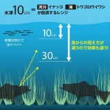 SHIMANO EXSENCE COO 190F X AR-C